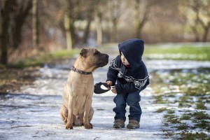 A child with their dog