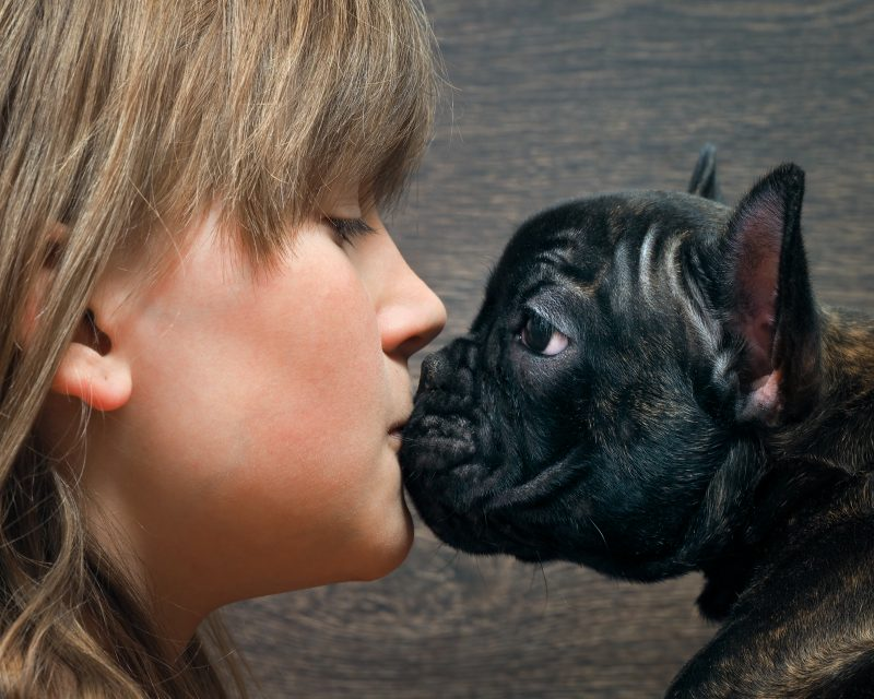 Kiss Dog and child