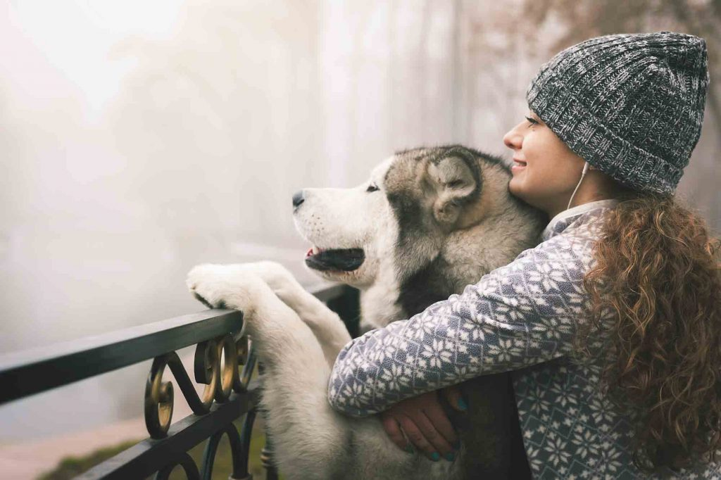 new years resolutions for pets