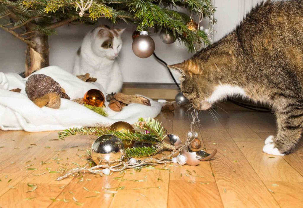 holiday decoration pet safety